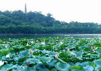 Hangzhou Two Days Tour 1