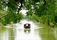 Hangzhou One Day XIxi National Wetland Park Tour