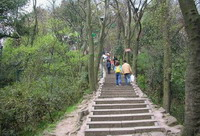 Hangzhou Hiking Tour  -- Precious Stone Hill