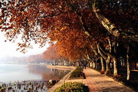 Hangzhou West Lake Luxury One Day Tour