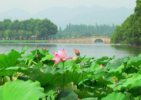 Hangzhou One Day Budget City Trip